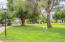 Lovely grounds with mature trees throughout