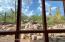 Beautiful mountain view from the Arizona Room.