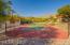 6445 N Tierra De Las Catalinas, 61, Tucson, AZ 85718