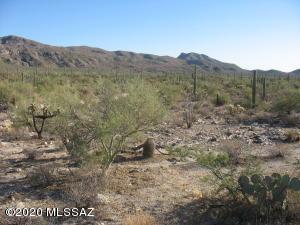 Carpenter Ranch Road, Marana, AZ 85658