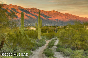 5100 N Camino Antonio, 277,278, Tucson, AZ 85718