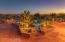6651 N Altos Segundo, Tucson, AZ 85718