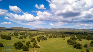 TBD Forest Road 4745, -, Patagonia, AZ 85624