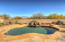 12658 N Yellow Bird Road, Tucson, AZ 85755