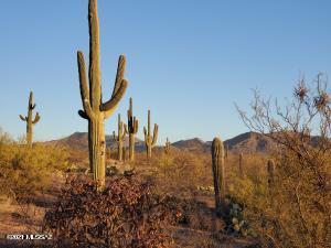15573 E Hat Creek Ranch Place, N/A, Vail, AZ 85641