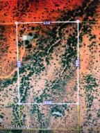2228 W Williams Ranch Road, Benson, AZ 85602