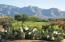 1540 E Crown Ridge Way, Oro Valley, AZ 85755