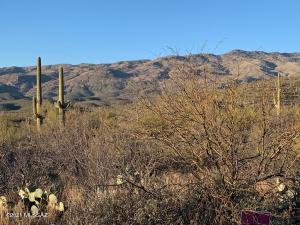 7852 S Diamond X Ranch Place, 229, Tucson, AZ 85747