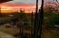 many sunsets