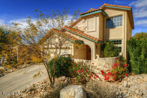 1645 E Deer Shadow Lane, Oro Valley, AZ 85737