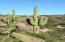 6310 N Cascabel Road, Benson, AZ 85602