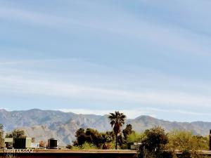 1620 N Wilmot Road, F221, Tucson, AZ 85712