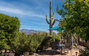 5353 W Lace Cactus Place, Marana, AZ 85658