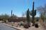 4156 W Winter Wash Drive, Tucson, AZ 85745