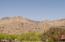 Mountain View (Catalinas)