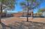 1332 E 9th Street, Tucson, AZ 85719