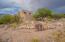 5281 N Calle Bujia, Tucson, AZ 85718