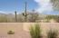 Beautiful desert and mountain views in backyard