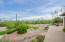 south-oriented view, toward the Santa Ritas