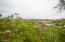 Surrounded by desert vegetation.