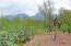 4537 N Scenic Mountain Drive, Tucson, AZ 85750