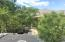 Tucson, AZ 85750