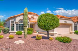 14128 N Cirrus Hill Drive, Oro Valley, AZ 85755