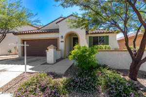 11008 E Actinidia Place, Tucson, AZ 85747