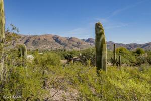 10975 E Calle Vaqueros, Tucson, AZ 85749