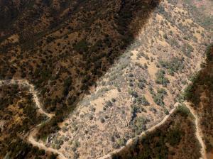 S Fork Drive, Three Rivers, CA 93271