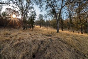 Ferndale Drive, Three Rivers, CA 93271