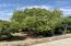24418 Summit, Lemon Cove, CA 93244