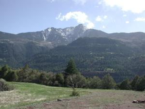 226 County Road 14 Ouray CO 81427