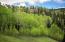 146 HOOD PARK Road, Mountain Village, CO 81435