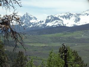 #4 Gracie sky mountain Placerville CO 81430