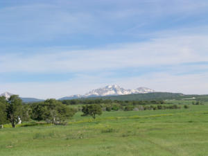 110 45 Y Road, Lot 4 Norwood CO 81423