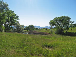 59346 SPRING CREEK Road Montrose CO 81403