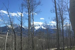 TBD Saddle Horn Lane, Telluride, CO 81435