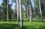 TBD Elk Drive, Montrose, CO 81401