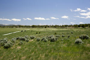 tbd BOSTWICK PARK Road, Montrose, CO 81401
