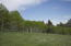 This Aspen grove and meadow is located located west of the driveway and North of the homesite