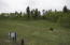 View from North Property line looking south. Homesite is on the far side of trees at the top of the ridge line.