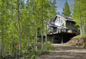 214 Mill Road, Rico, CO 81332
