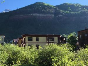 259 S Spruce Street Unit: B, Telluride, CO 81435