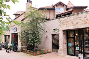 650 Mountain Village Unit: E, Mountain Village, CO 81435
