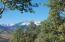 206 E SERAPIO Drive, Telluride, CO 81435