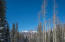 35 SKUNK CREEK Road, Telluride, CO 81435