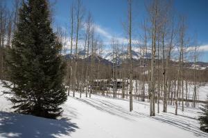 20 Elk Run Road Telluride CO 81435