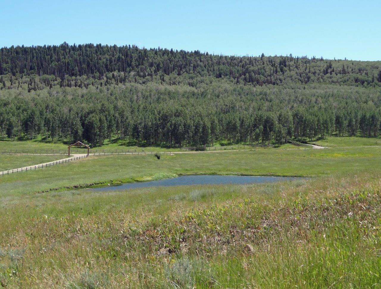 10C Spruce Mountain Lane Ridgway CO 81432