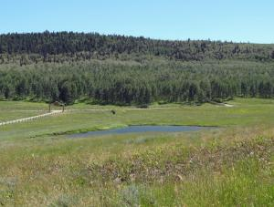 10C Spruce Mountain Lane, Ridgway, CO 81432